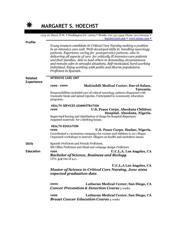 work resume example